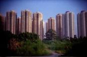 公共專業聯盟  香港城市大學當代中國研究計劃合辦 : 香港地產政治研討會 — 社區篇